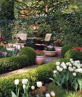 Идеи планировки сада