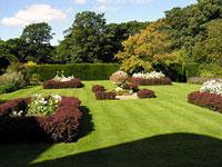Характерные черты приусадебного сада