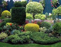 Первые шаги в украшении сада