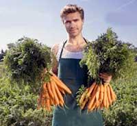 Роль удобрений в жизни овощей