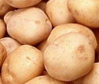 Картофель — весна не за горами