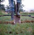 Освоение нового участка под огород <!-- Kan_content -->